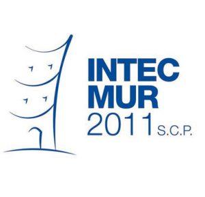 logo intecmur